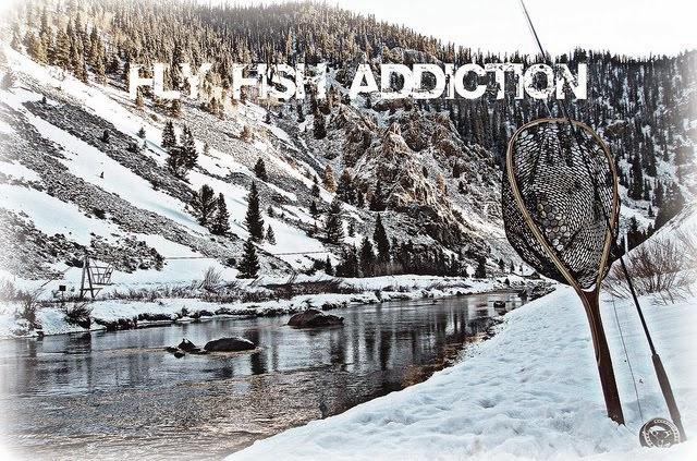 Fly Fish Addiction