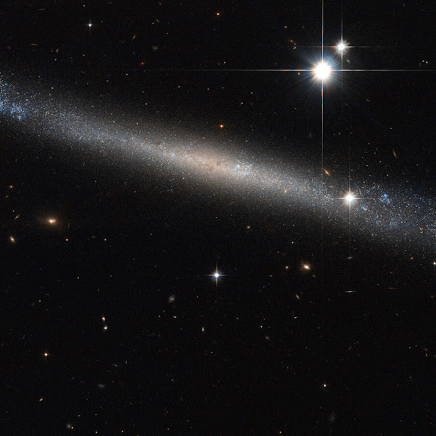 Edge-on Spiral Galaxy IC 2233