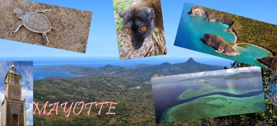 Mayotte l'île aux parfums aux tortues au lagon