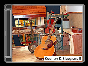 COUNTRY AND BLUEGRASS II