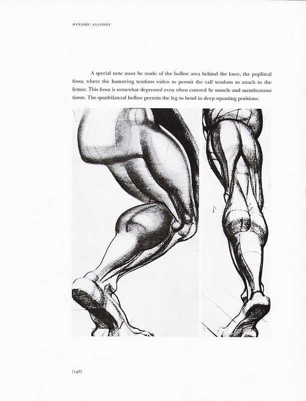 Burne hogarth dynamic figure drawing download \\ MATHTOLD.CF