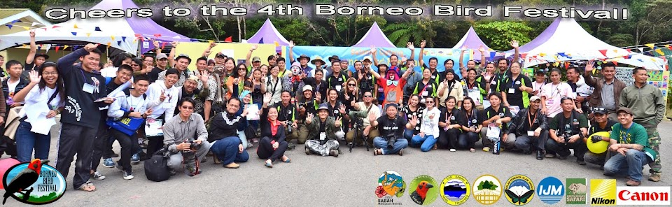 Sandakan Borneo Bird Club