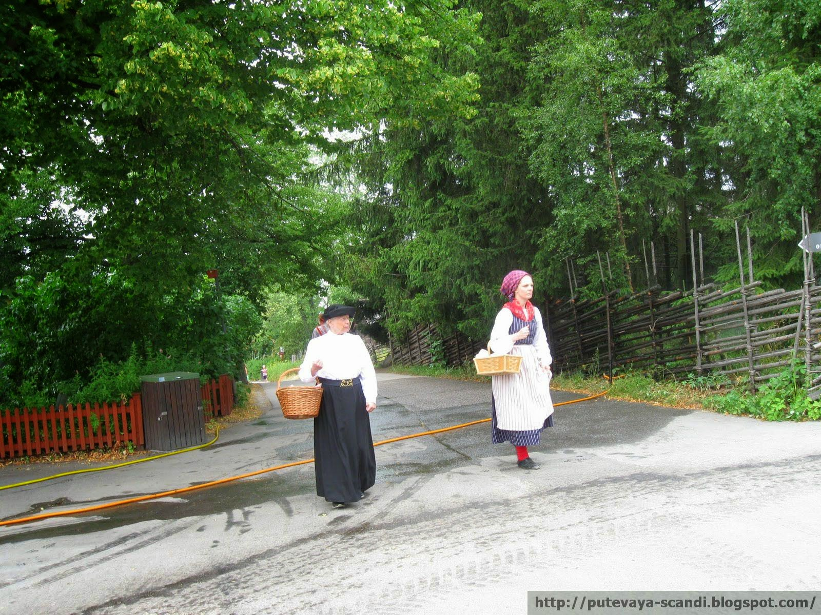 ladies in traditional Swedish costumes