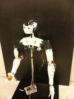 ImMoov robot