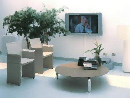Plantas y flores plantas especies decoraci n e - Iluminacion para plantas ...