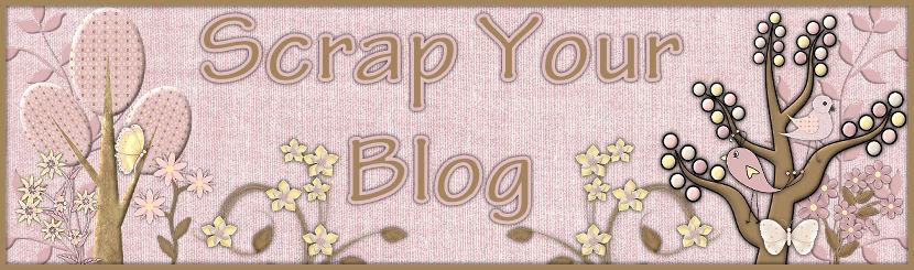 Scrap Your Blog