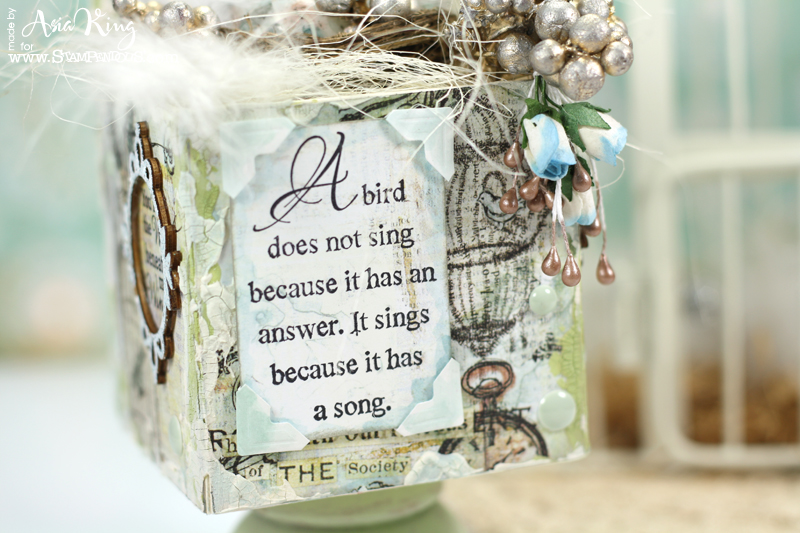 Stampendous a Bird Sings CRH293 birdcages patterned paper