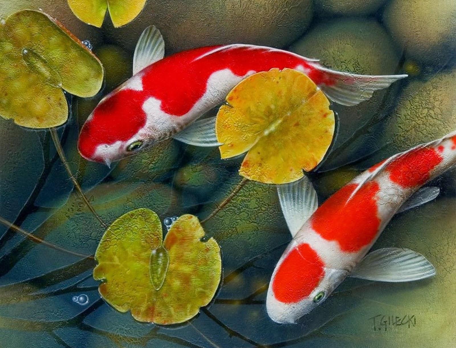 Pintura moderna y fotograf a art stica cuadros de peces for Imagenes de peces chinos