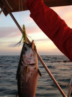 Jim holding up the tuna we caught on the way to Fort Pierce
