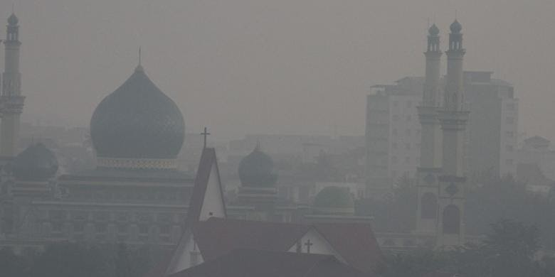 Petisi: Pak Jokowi, blusukan asap ke hutan gambut kami di Riau