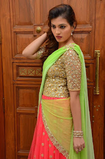 Sufi Sayyad in Golden Choli and Saree Spicy Pics