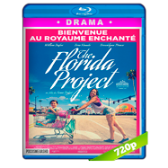 Proyecto Florida (2017) BRRip 720p Audio Dual Latino-Ingles