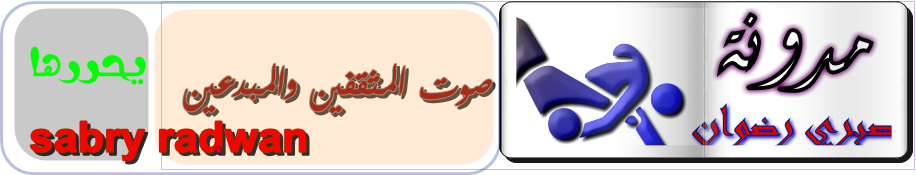 مدونة صبري رضوان