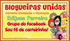 carteirinha de parceria do facebook com as Blogueiras Unidas
