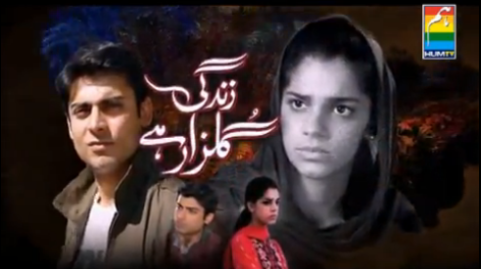 Watch Zindagi Gulzar Hai Last Episode 26 – Drama Hum Tv | New Pak ...