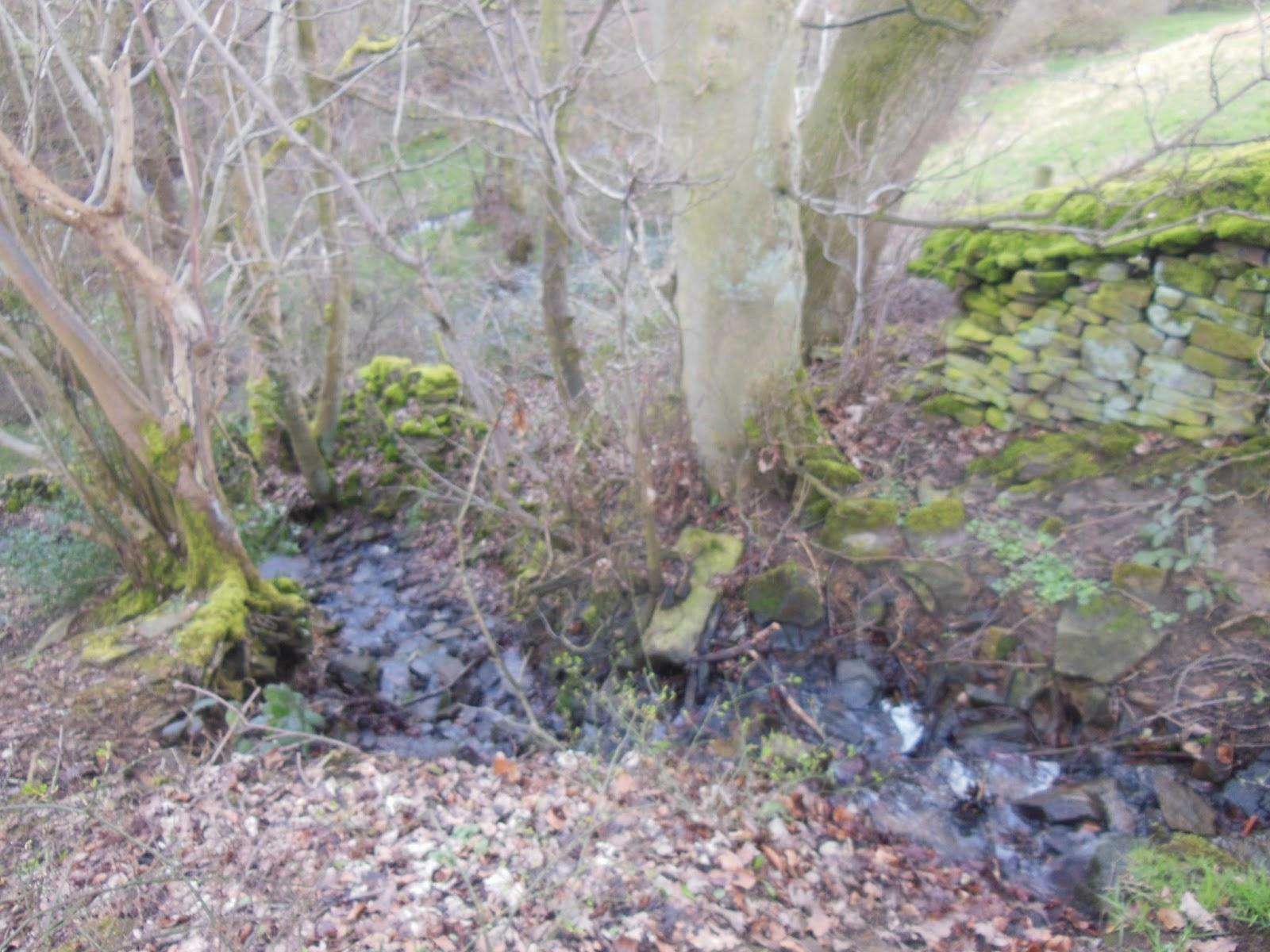 walks bradfield dale dike disaster