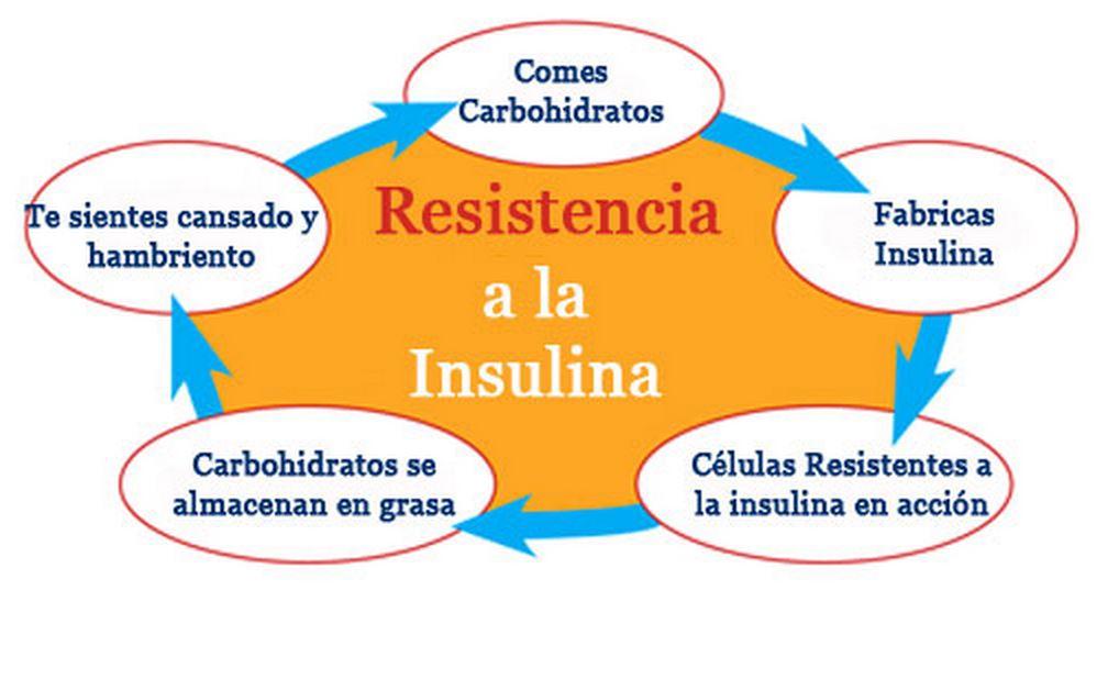 Diabetes - Resistencia a la insulinaDiabetes