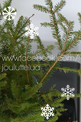 https://www.facebook.com/jouluttelua?ref=hl