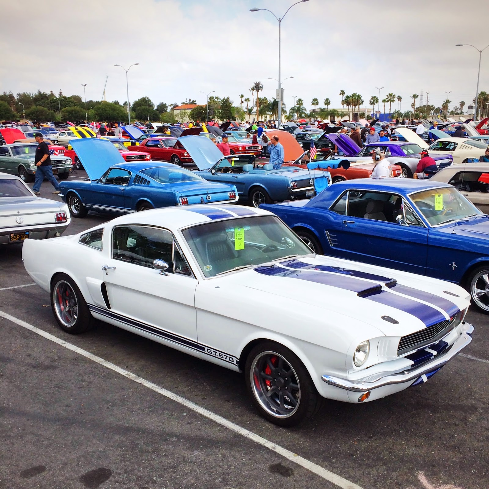 Covering Classic Cars Fabulous Fords Forever Car Show At Knotts - Classic pony car shows