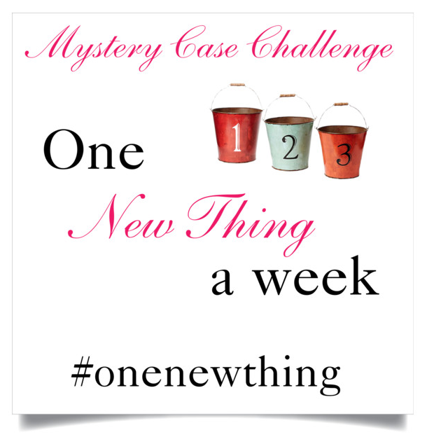 Mystery Case blog challenge | One New Thing (a week) | Perth Worth Casing blogger | Bucket list
