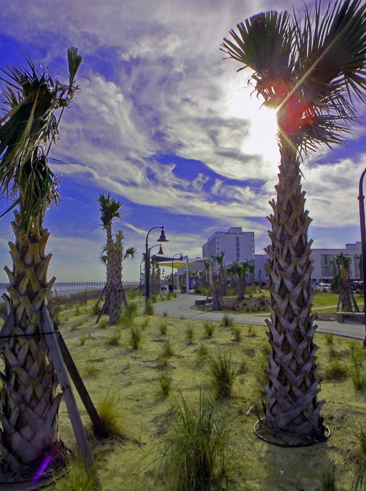 Palms Oceanfront Myrtle Beach