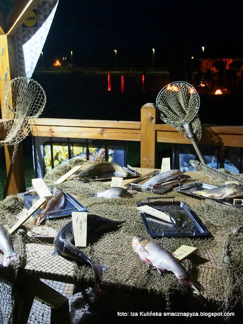 ryby są super , wycieczka , na ryby , stawy hodowlane , blogerzy razem , lidl , dla blogerów , weekend , dolina baryczy