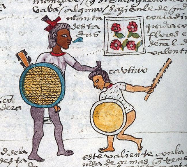 Códice Mendoza