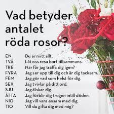betydelse för rosor