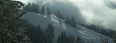 European ski resorts - alpine skiing in Europe - snowy mountainside with trees and sunlight