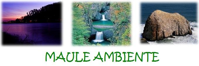 MAULE AMBIENTE