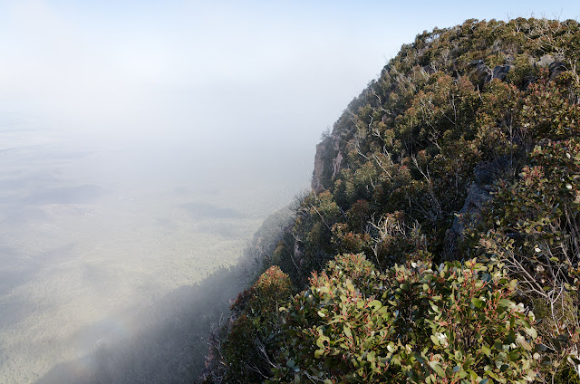 low cloud on major mitchell plateau