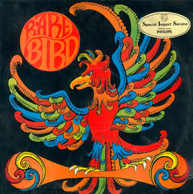 Rare Bird Songs