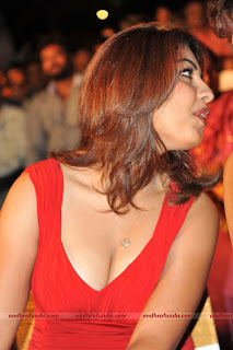 richa-gangopadhyay-hot cleavage