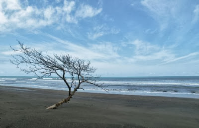 Playa Carate, Puntarenas