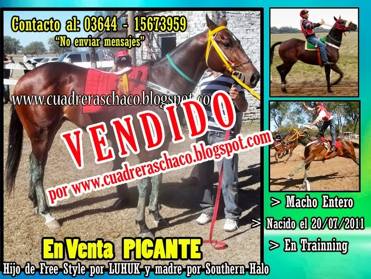 PICANTE VENDIDO