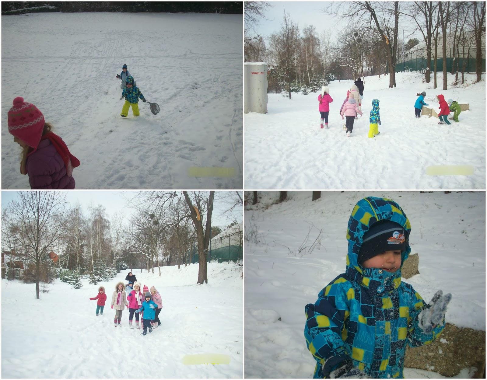 Dvorištance u Košutnjaku. Sneg 2014.