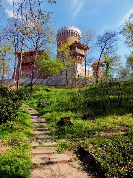 castel tepes carol aprilie 2013