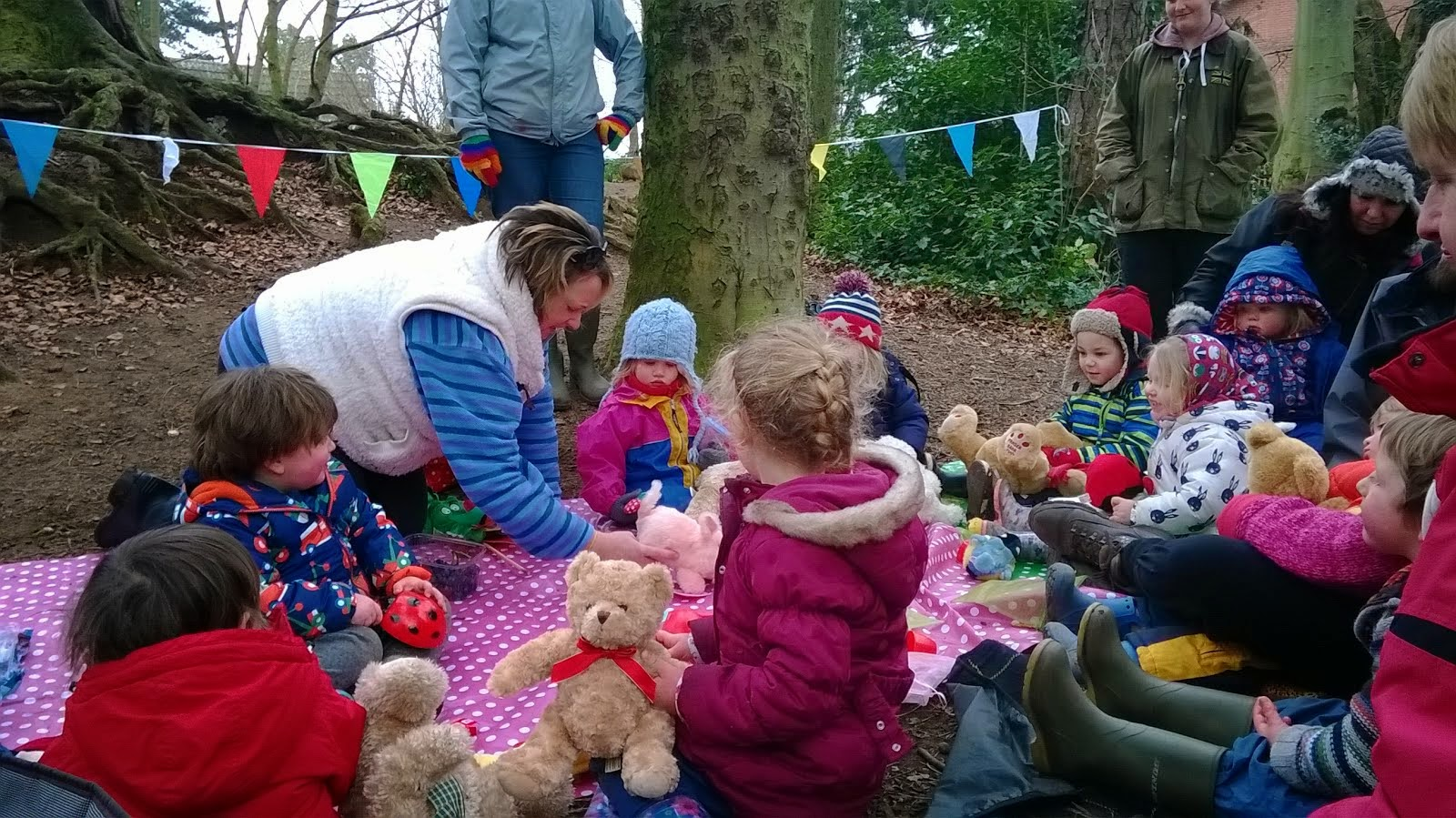 Teddy Bears Picnic Feb 2015