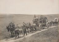 Kupa Removal 1903