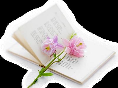 Lettre d'amour pour partager nos vies 5