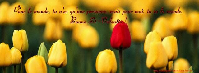 sms pour st valentin 2013