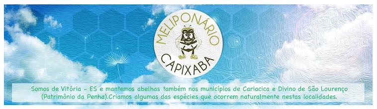 Meliponario Capixaba