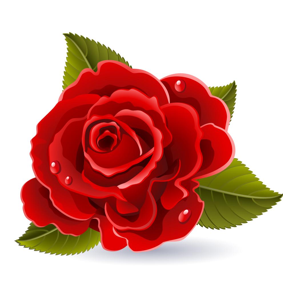 Descargar imagenes de amor bonitas gratis