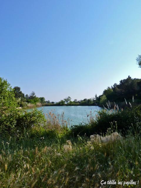 Ca titille les papilles !,Lac, Source d'eau, Montpellier