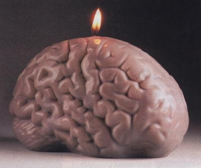 Brain Candle5