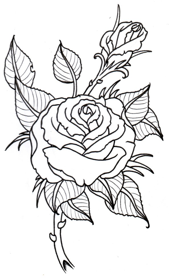 Out Line Drawing Flowers : Sunbeamflowers flowers outlines