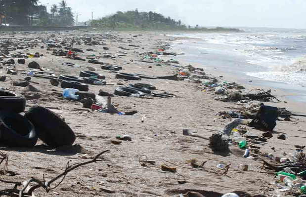 simple essays on pollution We provide you with an impressive paper sample, on the topic of plastic pollution in the pacific ocean use the example below to write a strong essay.