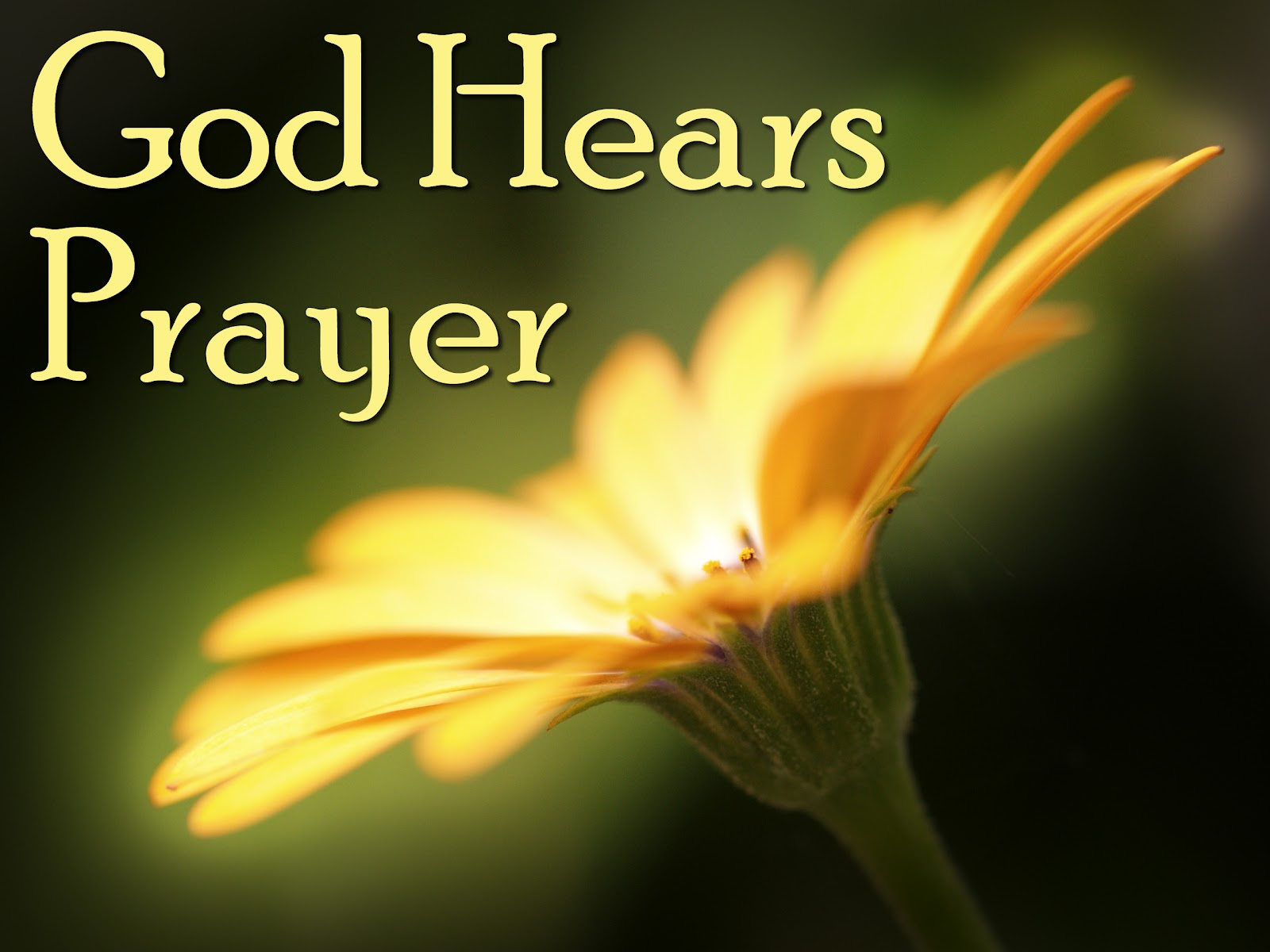 what is a prayer Prayer definition is - an address (such as a petition) to god or a god in word or thought how to use prayer in a sentence an address (such as a petition) to god or.