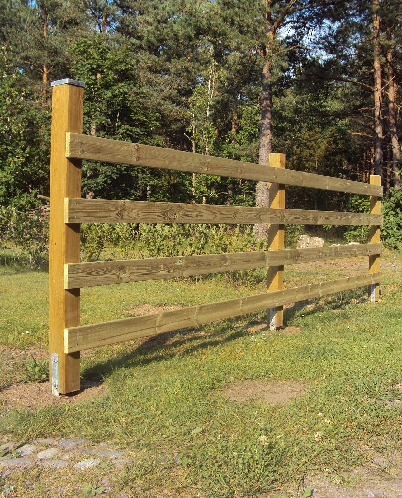 Livet i råby: staket