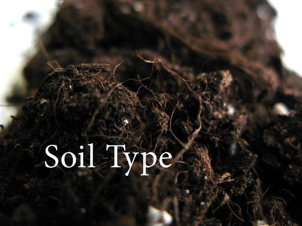 Mohammed 12 types of soil for The soil 02joy